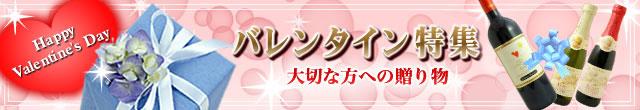 2014年 バレンタイン特集